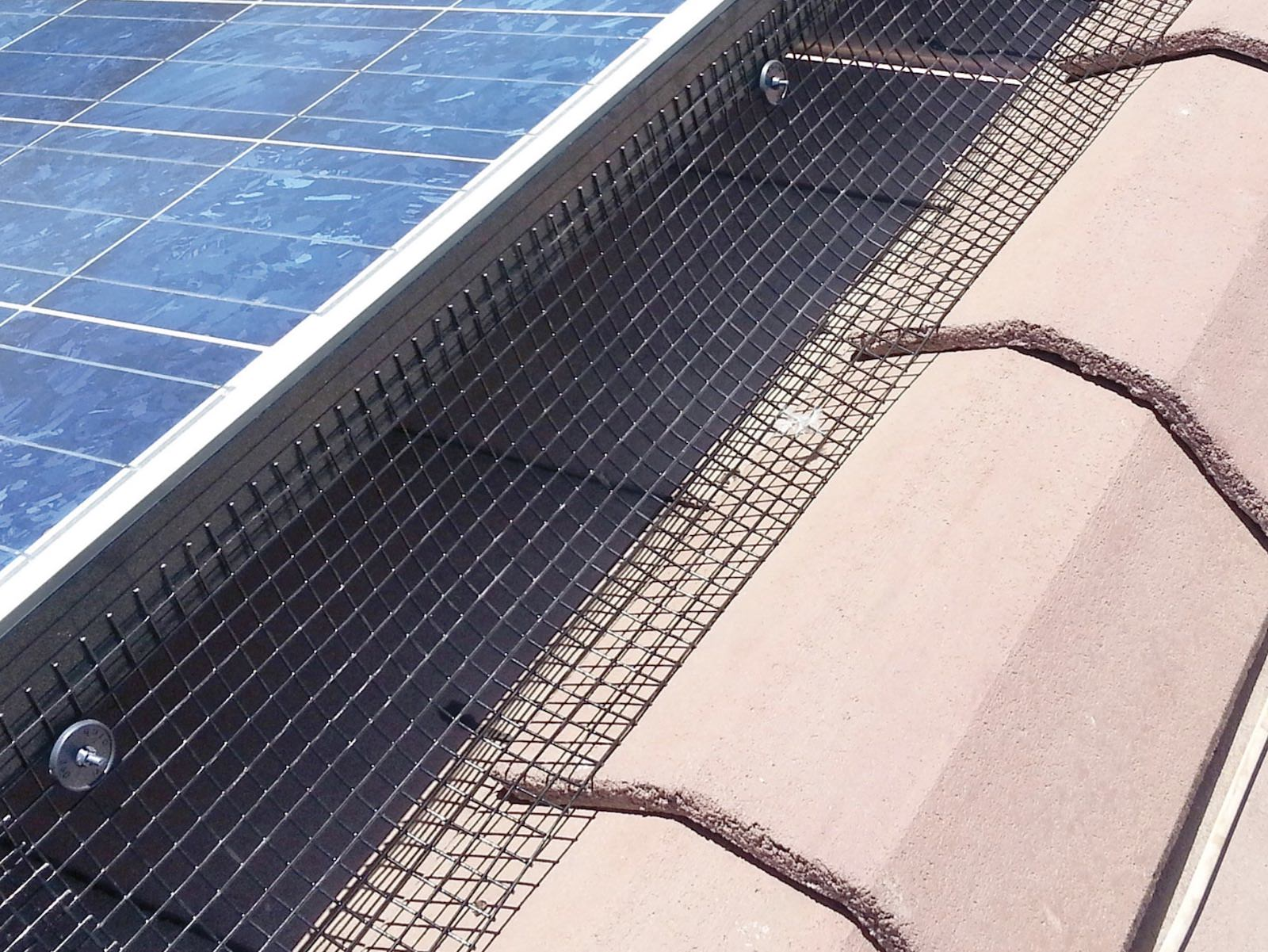 solar panel protection - install