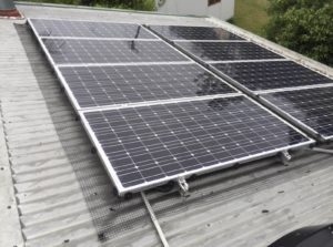 solar panel pigeon protection from pests